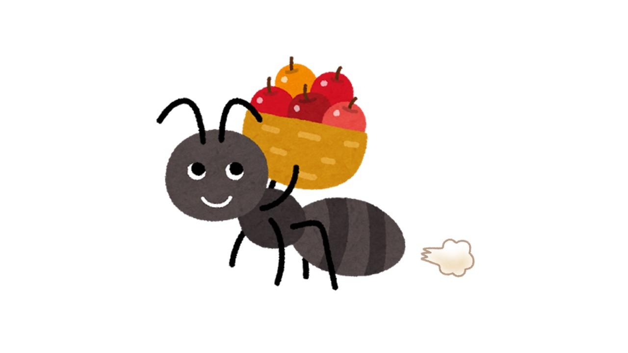 ひねくれアリとゆらぎについて。「正解」がわからなくなったときに僕が思い出すアリの話